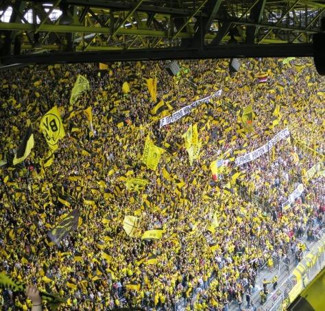 gelbe-wand-bvb