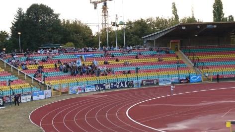 CFC-Fans